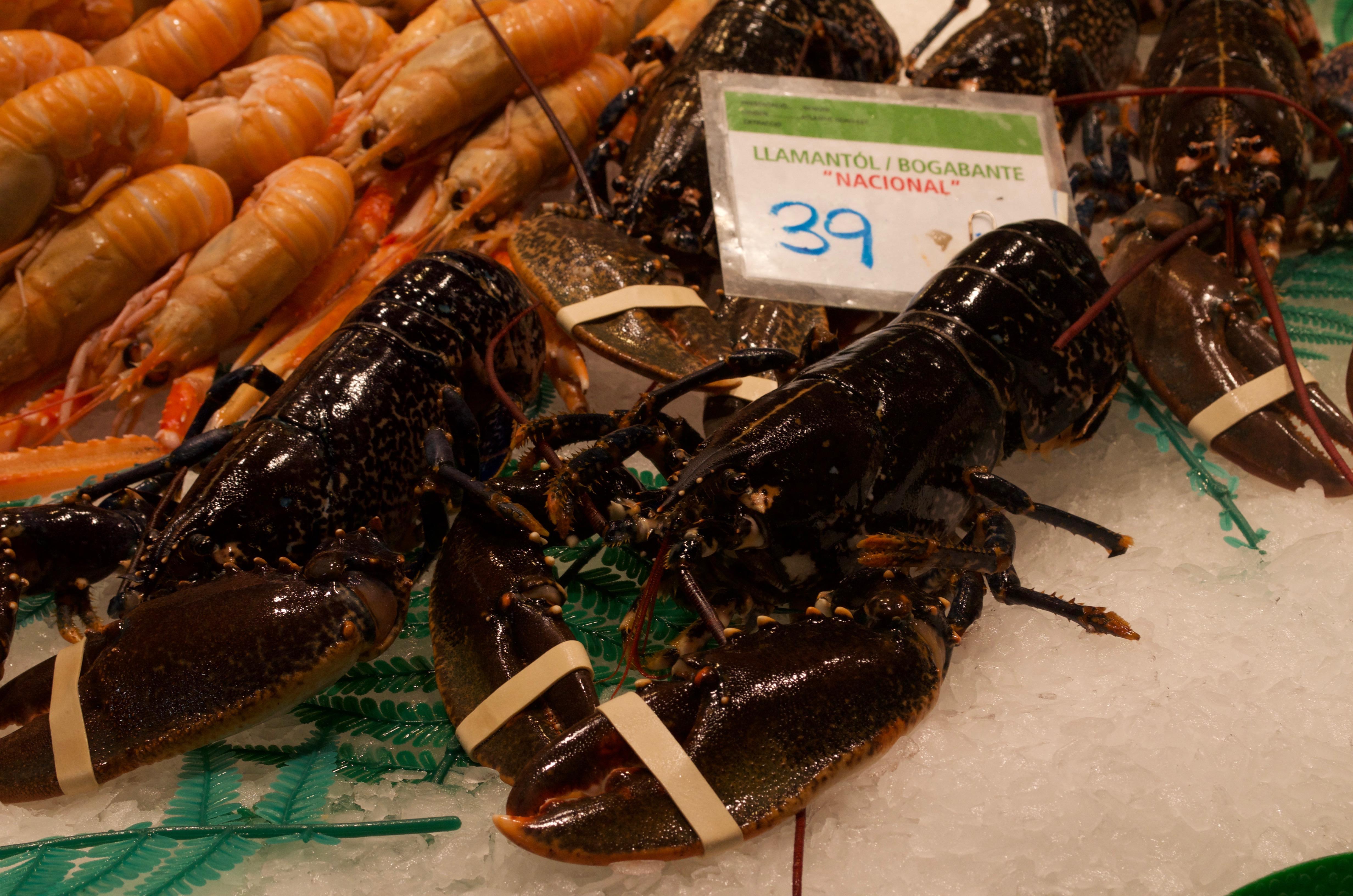 lobster at La Boqueria market