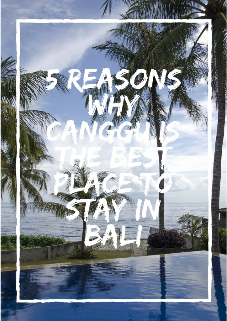 reasons to stay in Canggu